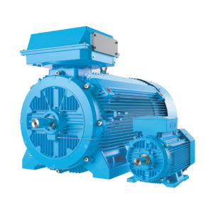 Process Performance Induction Motors